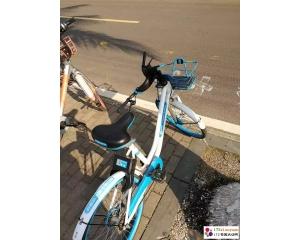 校园单车治理志愿活动